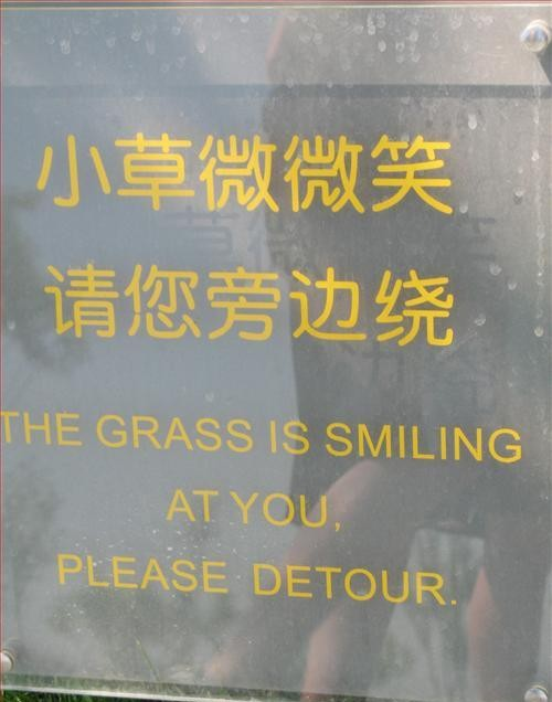 grass is smiling