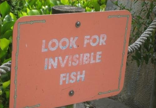 invisible_fish